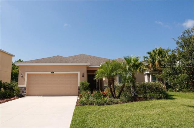 5715 New Paris Way, Ellenton, FL 34222 (MLS #U8049976) :: Medway Realty