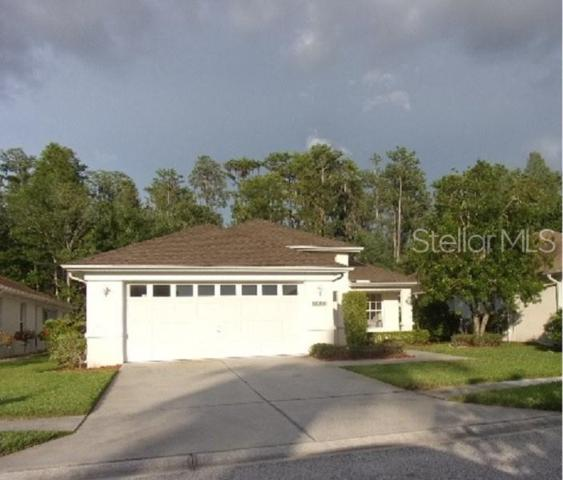 1632 Orchardgrove Avenue, New Port Richey, FL 34655 (MLS #U8050145) :: Griffin Group