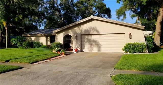 130 Laughing Gull Lane, Palm Harbor, FL 34683 (MLS #U8050154) :: Griffin Group