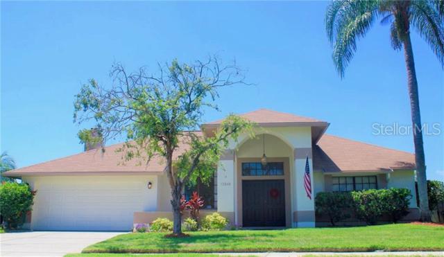 12048 Stone Crossing Circle, Tampa, FL 33635 (MLS #U8050209) :: Griffin Group