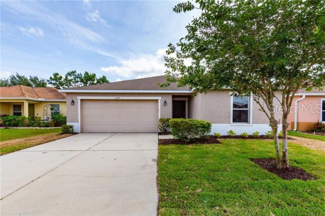 11217 Running Pine Drive, Riverview, FL 33569 (MLS #U8050219) :: Griffin Group