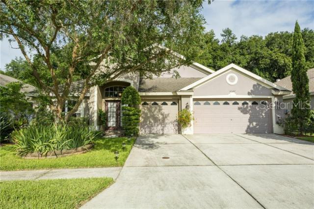 10542 San Travaso Drive, Tampa, FL 33647 (MLS #U8050305) :: Lovitch Realty Group, LLC