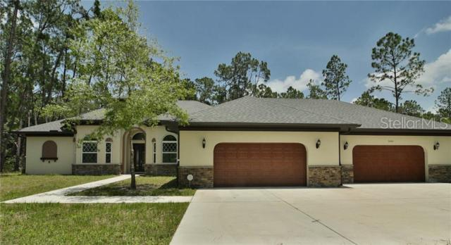 7460 Thunderhead Street, Wesley Chapel, FL 33544 (MLS #U8050352) :: The Duncan Duo Team