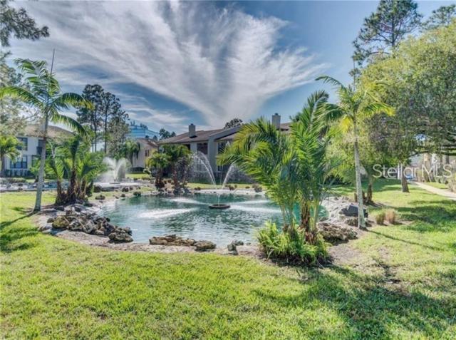 2002 Blue Hawk Court #1723, Clearwater, FL 33762 (MLS #U8050466) :: Jeff Borham & Associates at Keller Williams Realty