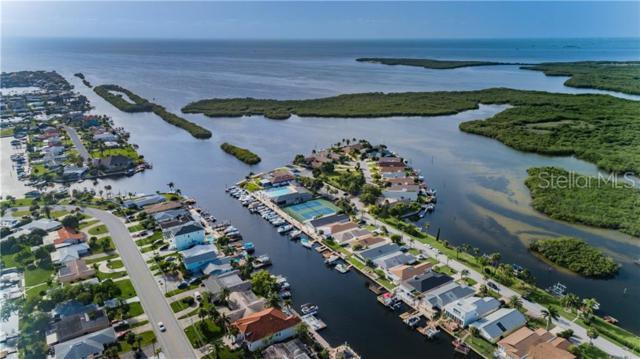4000 Marine Parkway, New Port Richey, FL 34652 (MLS #U8050512) :: Charles Rutenberg Realty