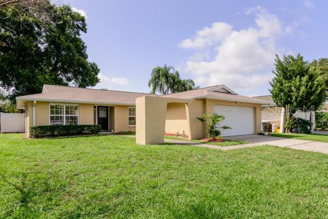 2461 Moore Haven Drive W, Clearwater, FL 33763 (MLS #U8050521) :: Griffin Group