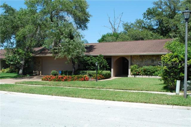 910 Winding Oaks Drive, Palm Harbor, FL 34683 (MLS #U8050570) :: Delgado Home Team at Keller Williams