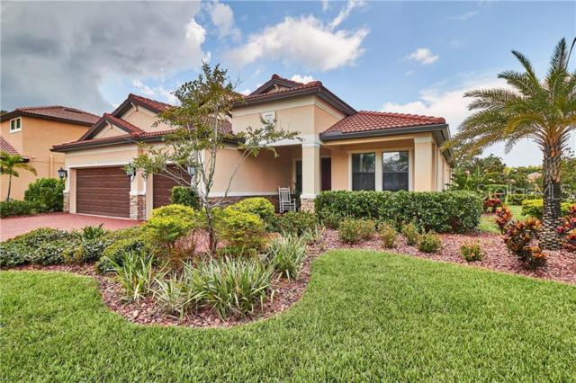 4622 Grand Lakeside Drive, Palm Harbor, FL 34684 (MLS #U8050577) :: Delgado Home Team at Keller Williams