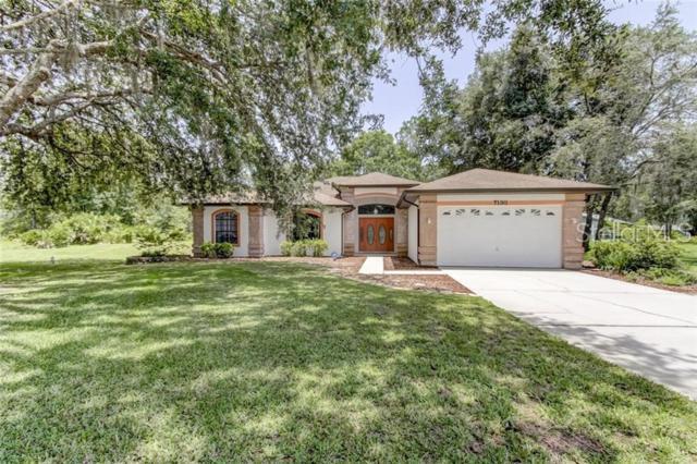 7130 Hamilton Lane, Wesley Chapel, FL 33544 (MLS #U8050643) :: Griffin Group