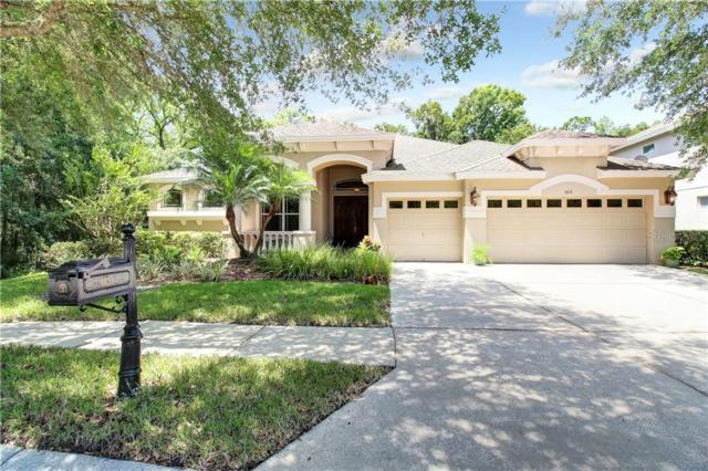 6631 Thornton Palms Drive, Tampa, FL 33647 (MLS #U8050702) :: Jeff Borham & Associates at Keller Williams Realty