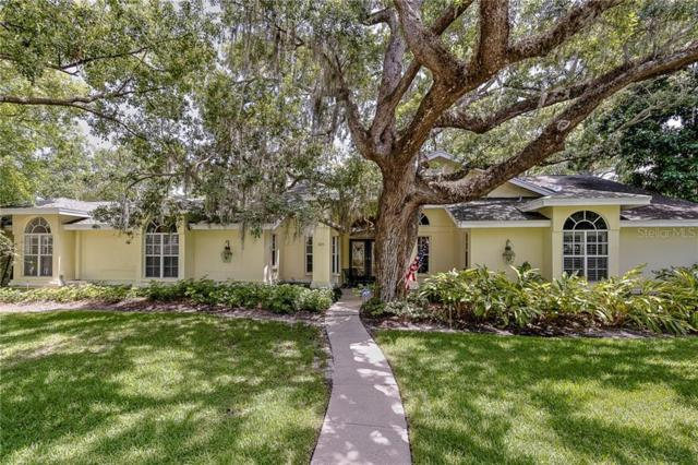 425 Lotus Path, Clearwater, FL 33756 (MLS #U8050848) :: Premium Properties Real Estate Services