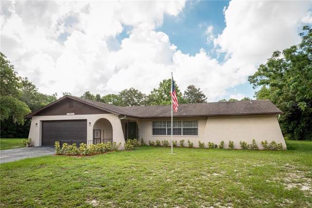 15334 Camrose Avenue, Spring Hill, FL 34610 (MLS #U8050904) :: Cartwright Realty