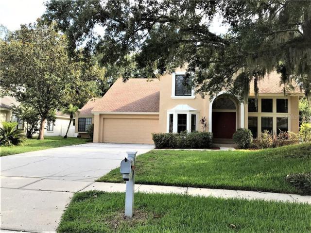 6223 Chauncy Street, Tampa, FL 33647 (MLS #U8050928) :: Team Bohannon Keller Williams, Tampa Properties