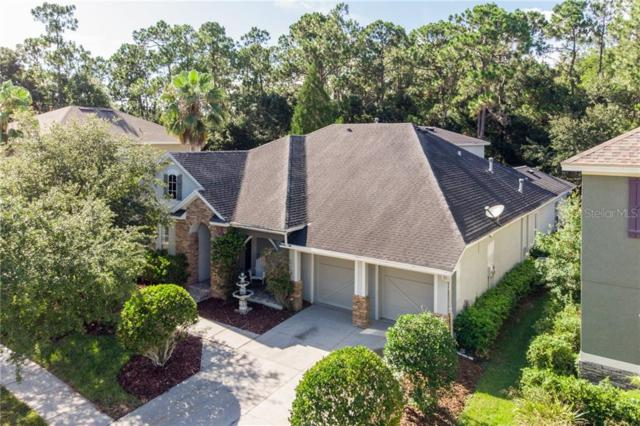 11919 Meridian Point Drive, Tampa, FL 33626 (MLS #U8051291) :: Andrew Cherry & Company