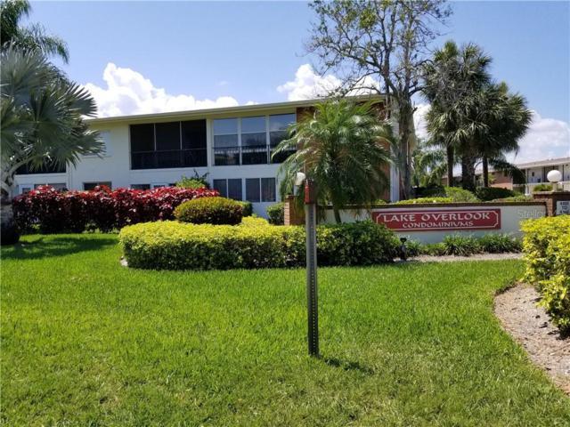 4500 Overlook Drive NE #102, St Petersburg, FL 33703 (MLS #U8051438) :: Griffin Group
