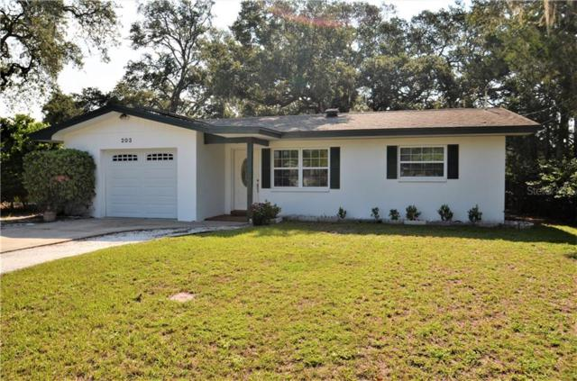 203 Oak Bluff Drive, Palm Harbor, FL 34683 (MLS #U8051452) :: Lovitch Realty Group, LLC