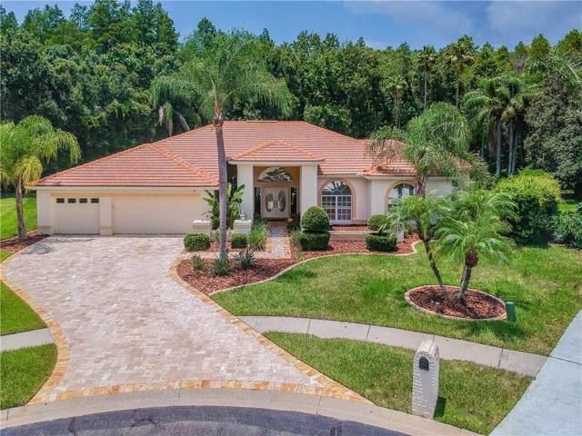 1092 Copeland Court, Tarpon Springs, FL 34688 (MLS #U8051641) :: Team Bohannon Keller Williams, Tampa Properties