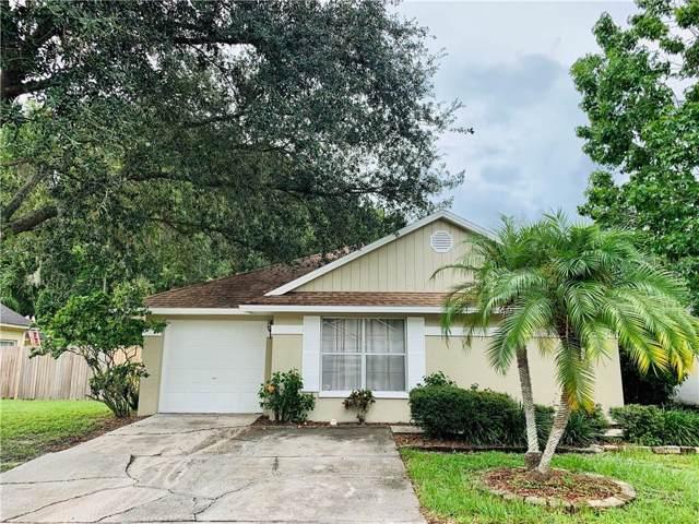5911 Bitterwood Court, Tampa, FL 33625 (MLS #U8051725) :: Cartwright Realty