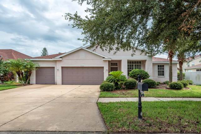 11003 Stone Branch Drive, Riverview, FL 33569 (MLS #U8051751) :: Team Bohannon Keller Williams, Tampa Properties