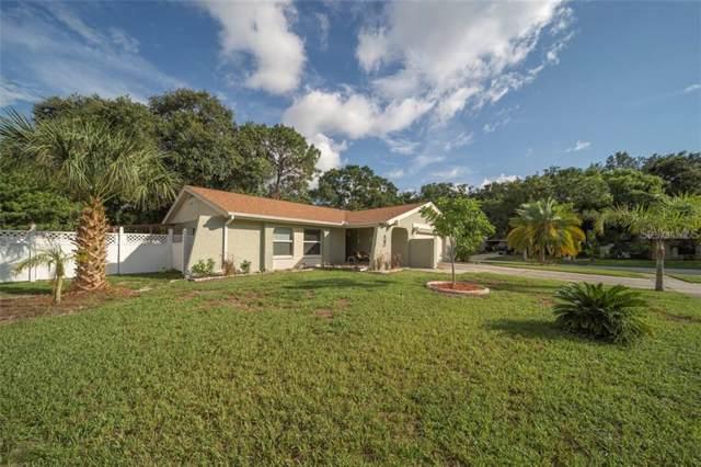 2660 Warmsprings Way, Palm Harbor, FL 34684 (MLS #U8051784) :: Bridge Realty Group