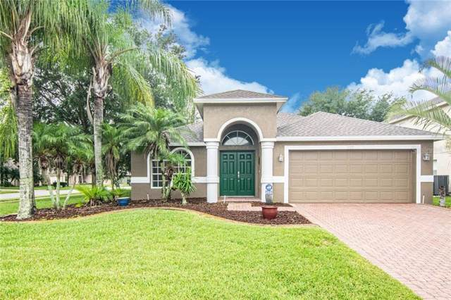 337 Kaley Court, Oldsmar, FL 34677 (MLS #U8051806) :: Team 54