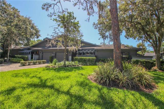 30 Morning Dove Place, Oldsmar, FL 34677 (MLS #U8051840) :: Paolini Properties Group
