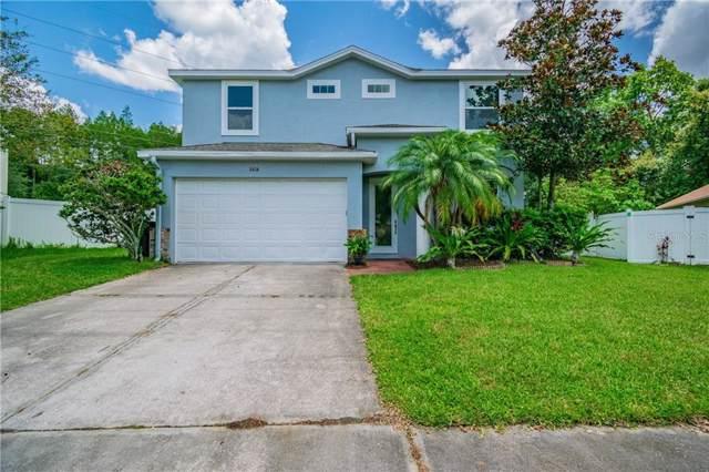 8808 Bayaud Drive, Tampa, FL 33626 (MLS #U8051858) :: Delgado Home Team at Keller Williams