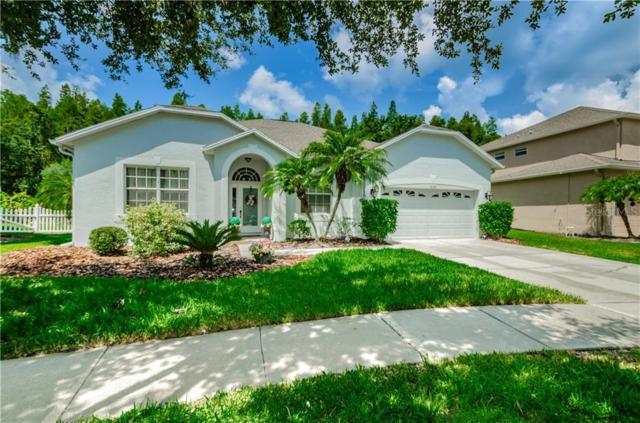 10626 Grand Riviere Drive, Tampa, FL 33647 (MLS #U8051884) :: Cartwright Realty