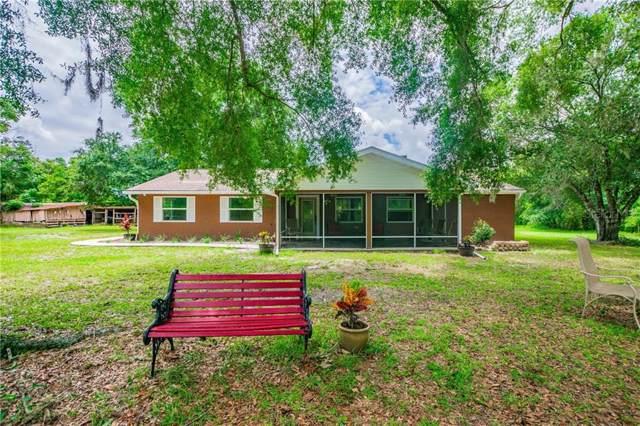 16008 Rester Drive, Brooksville, FL 34613 (MLS #U8051894) :: Team 54