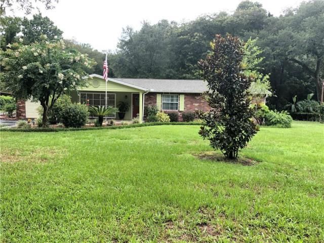 14111 Mcintosh Road, Thonotosassa, FL 33592 (MLS #U8051958) :: Jeff Borham & Associates at Keller Williams Realty