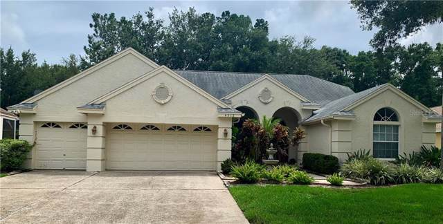 4312 Fallbrook Boulevard, Palm Harbor, FL 34685 (MLS #U8051988) :: Lovitch Realty Group, LLC