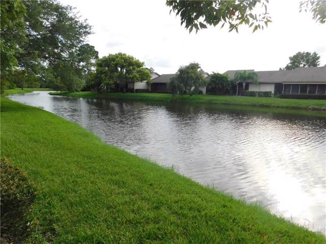 20 Thomas Lane, Oldsmar, FL 34677 (MLS #U8052010) :: Jeff Borham & Associates at Keller Williams Realty