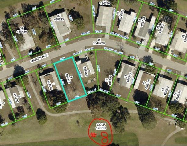 12303 Obrien Avenue, Brooksville, FL 34613 (MLS #U8052036) :: Team 54