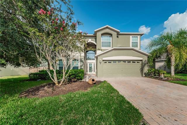 1154 Halapa Way, Trinity, FL 34655 (MLS #U8052037) :: Delgado Home Team at Keller Williams
