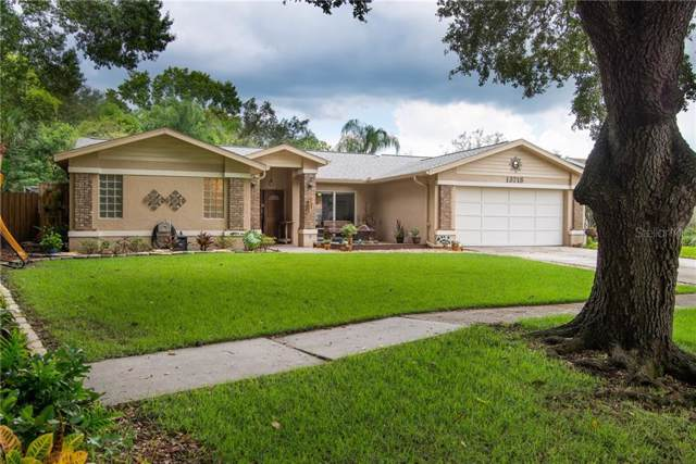 13718 Wilkes Drive, Tampa, FL 33618 (MLS #U8052047) :: Burwell Real Estate
