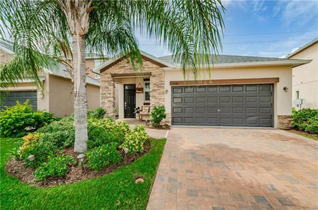 11622 Lake Boulevard, New Port Richey, FL 34655 (MLS #U8052080) :: Cartwright Realty