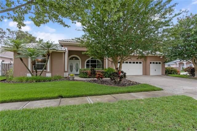 10684 Park Place Drive, Seminole, FL 33778 (MLS #U8052111) :: Charles Rutenberg Realty