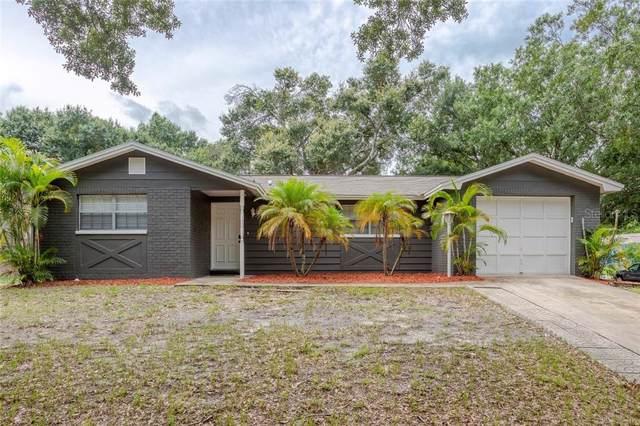1317 Crossbow Lane, Tarpon Springs, FL 34689 (MLS #U8052218) :: Team Bohannon Keller Williams, Tampa Properties