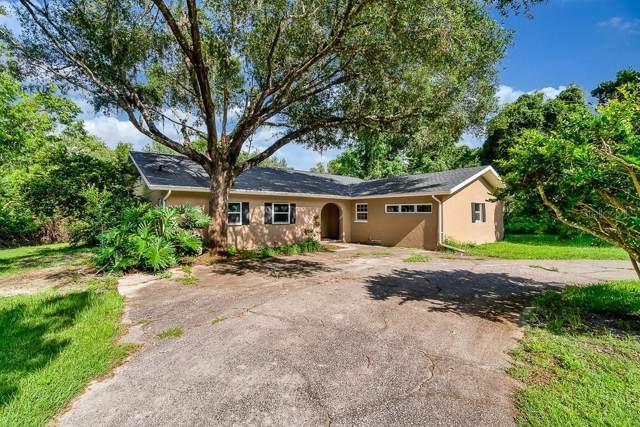 7732 Leo Kidd Avenue, Port Richey, FL 34668 (MLS #U8052243) :: Cartwright Realty