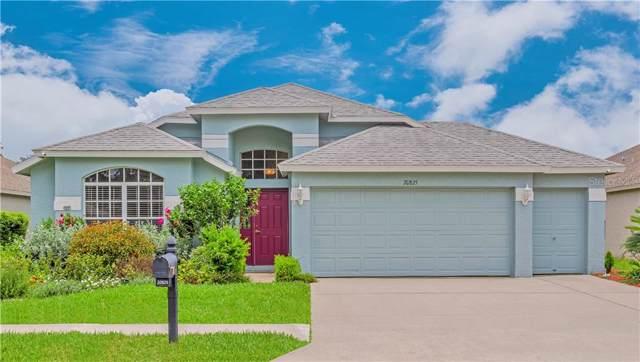 20825 Nectarine Place, Land O Lakes, FL 34637 (MLS #U8052385) :: RE/MAX CHAMPIONS