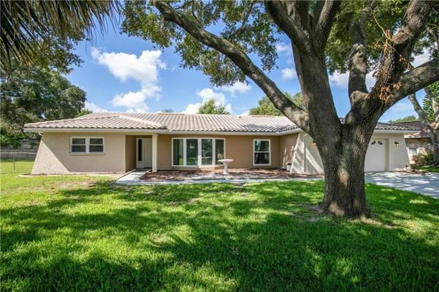 400 Plover Place, Palm Harbor, FL 34683 (MLS #U8052471) :: Bridge Realty Group