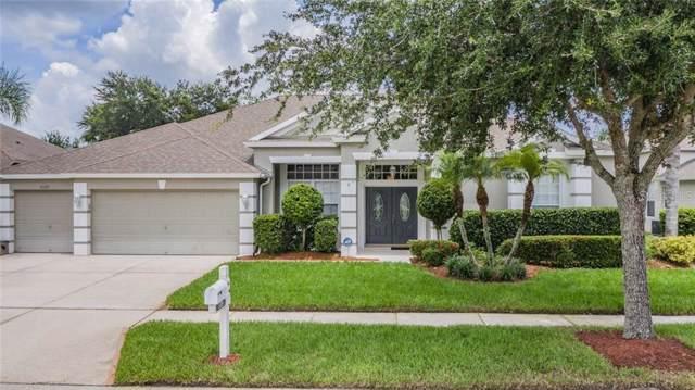 5520 Spectacular Bid Drive, Wesley Chapel, FL 33544 (MLS #U8052502) :: Griffin Group
