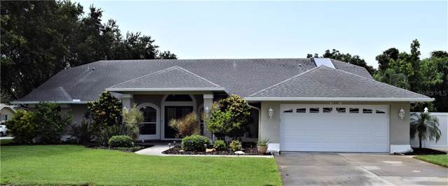 1201 Ridgegrove Drive S, Palm Harbor, FL 34683 (MLS #U8052541) :: Delgado Home Team at Keller Williams