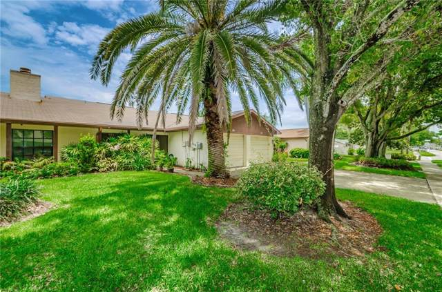 2004 Montego Court, Oldsmar, FL 34677 (MLS #U8052558) :: Paolini Properties Group