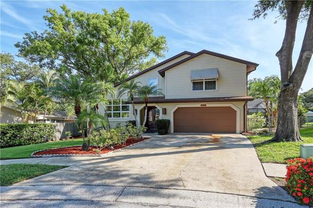 2017 Cindy Circle, Palm Harbor, FL 34683 (MLS #U8052587) :: Delgado Home Team at Keller Williams