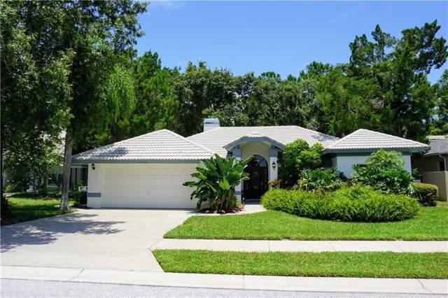 2435 Dana Drive, Safety Harbor, FL 34695 (MLS #U8052656) :: Charles Rutenberg Realty