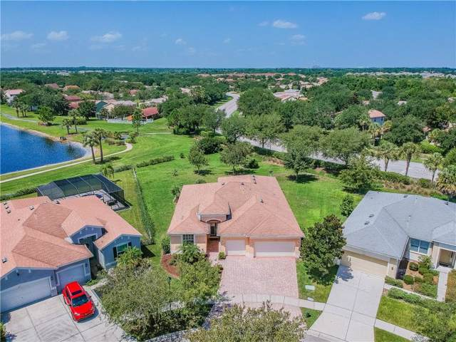 11209 Laurel Brook Court, Riverview, FL 33569 (MLS #U8052736) :: Cartwright Realty
