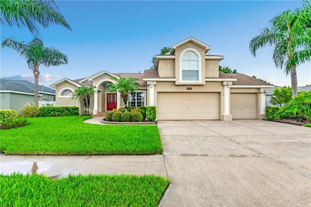 8905 Linebrook Drive, New Port Richey, FL 34655 (MLS #U8052738) :: Griffin Group