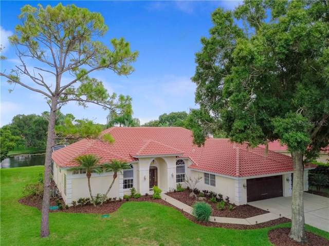 4033 Presidential Drive, Palm Harbor, FL 34685 (MLS #U8052779) :: Cartwright Realty