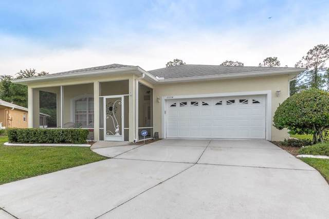 11514 Bloomington Court, New Port Richey, FL 34654 (MLS #U8052789) :: The Robertson Real Estate Group